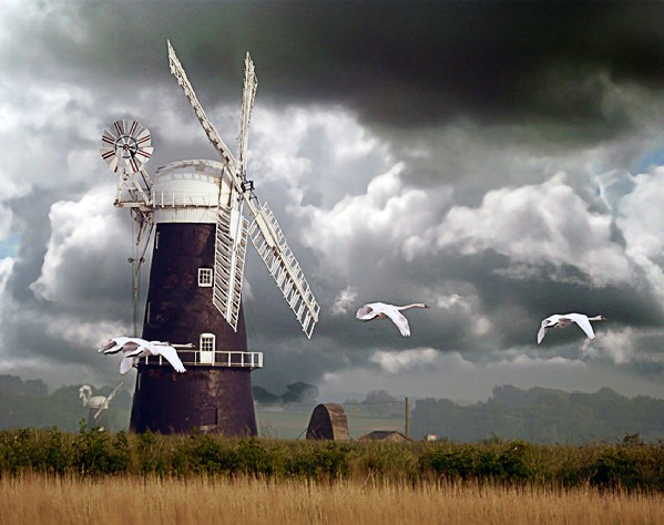 David Cutts Berney Arms Windmill